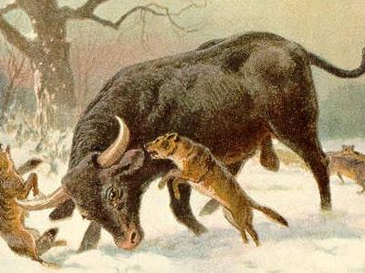 Языческие праздники и обряды восточных славян