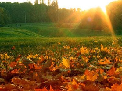 Приметы на погоду в сентябре