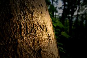 Заговор чтобы найти любовь