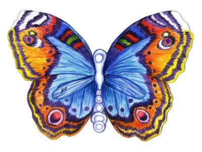Бабочка залетела в окно - примета