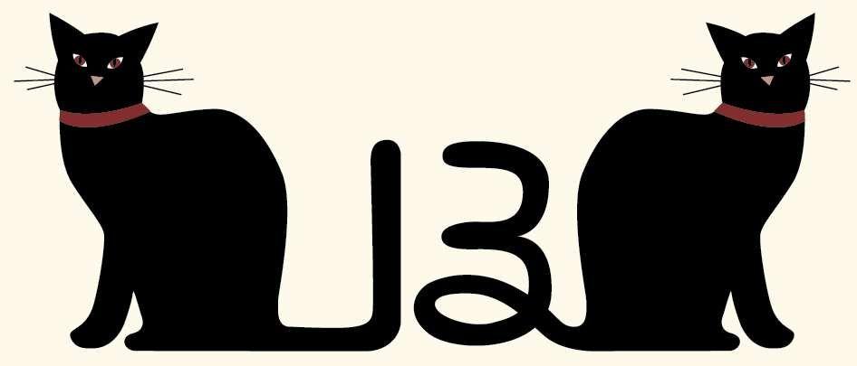 Цифра 13 обладает мистическими свойствами