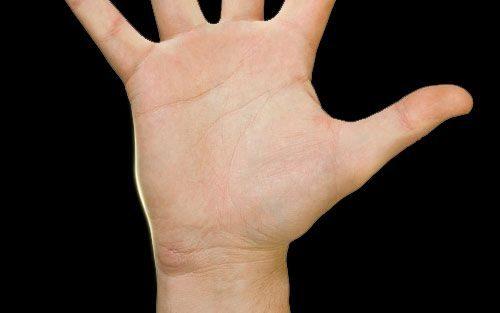 Линия ума на руке: значение в хиромантии, характеристика, фото