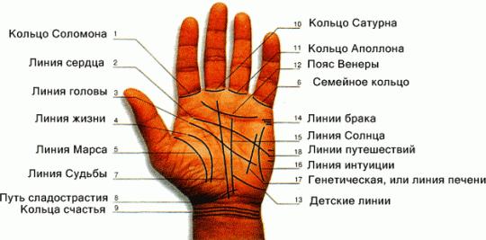 Вспомогательные линии дополнят информацию