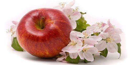 Приворотов на яблоко много
