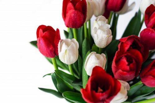 Порча на цветы